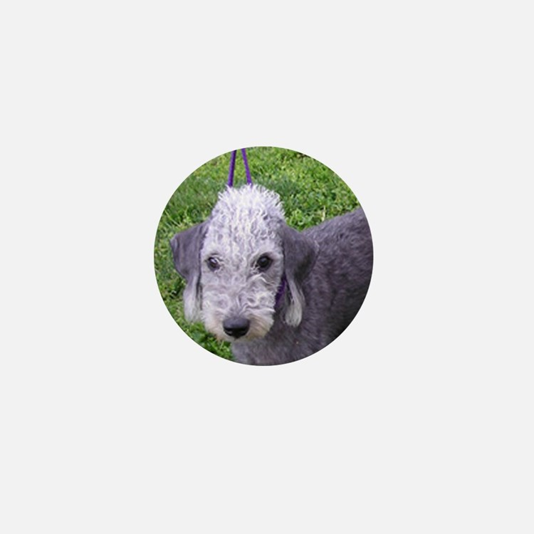 bedlington terrier grey Mini Button