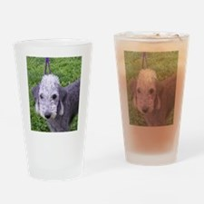 bedlington terrier grey Drinking Glass