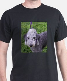 bedlington terrier grey T-Shirt