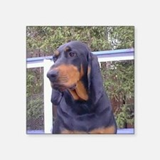 black and tan coonhound Sticker