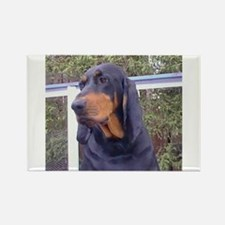 black and tan coonhound Magnets