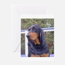 black and tan coonhound Greeting Cards