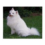 American eskimo dog Fleece Blankets