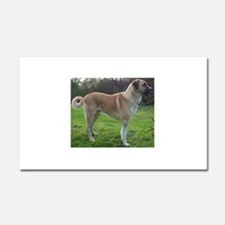 Anatolian Shepherd Dog full Car Magnet 20 x 12