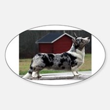 cardigan welsh corgi blue merle full Decal