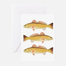Redfish Red Drum Greeting Cards