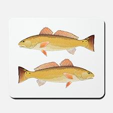 Redfish Red Drum Mousepad