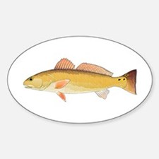 Redfish Red Drum Decal