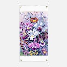 Cattleya, Lady Slipper, Formosa Orchid Banner