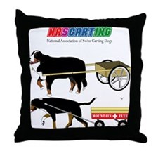 NASCARTING! Throw Pillow