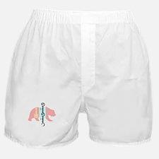 Mongolian Flag Bear Boxer Shorts