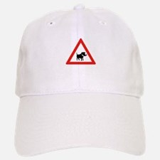 Beware of Warthogs, South Africa Baseball Baseball Cap