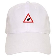 Beware of Warthogs, South Africa Baseball Cap