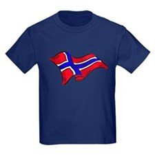 Norwegian flag of Norway T