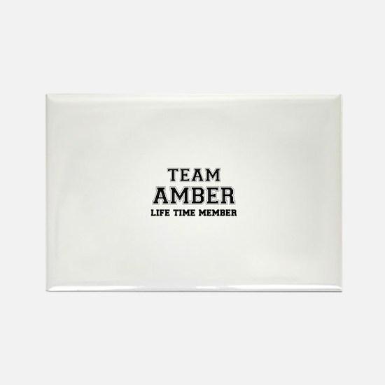 Team AMBER, life time member Magnets