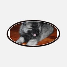 keeshond puppy Patch