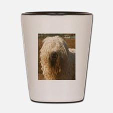 komondor Shot Glass
