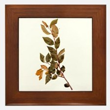 Leave/Leaf/Trees Pop Art Framed Tile