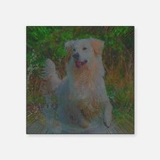 "Funny Rectangular Square Sticker 3"" x 3"""