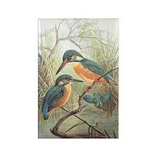 Kingfisher Rectangle Magnet