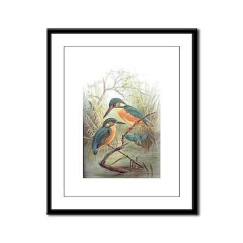 Kingfisher Framed Panel Print