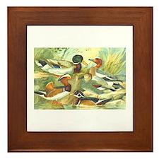 Duck Framed Tile