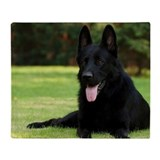 German shepherd Fleece Blankets