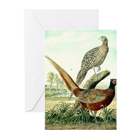 Pheasant Greeting Cards (Pk of 10)