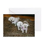 TWO GIRLS AND A BOY GREETING CARDS (PACK OF 10)