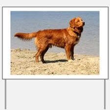 Nova Scotia Duck Tolling Retriever full Yard Sign