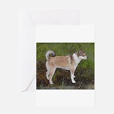 norwegian lundehund full Greeting Cards