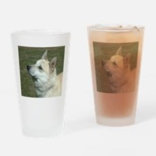 norwegian buhund Drinking Glass
