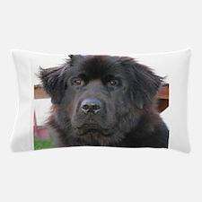 newfie 2 Pillow Case