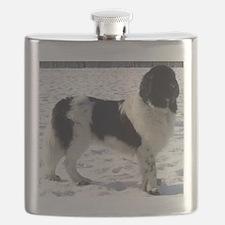 newfie 2 full Flask