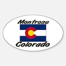Montrose Colorado Oval Decal