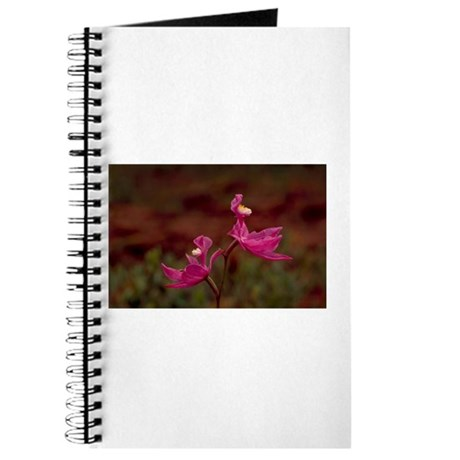 Orchid Journal