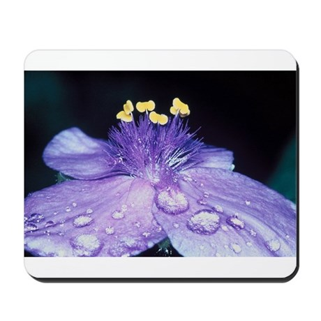 Spiderwort Mousepad