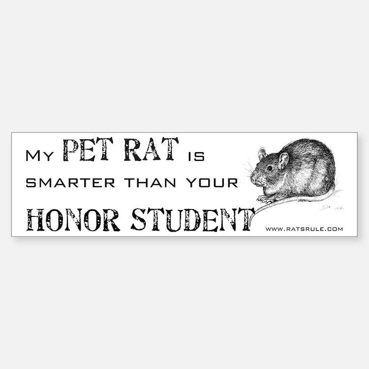 Smarter Pet Rat Bumper Car Car Sticker