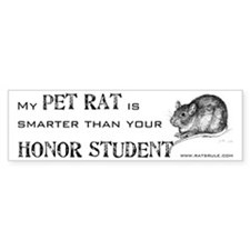 Smarter Pet Rat Bumper Car Sticker