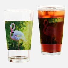 Unique Insulator Drinking Glass