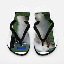 old english sheepdog full Flip Flops
