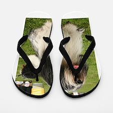 polish lowland sheepdog sitting Flip Flops