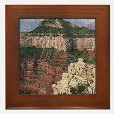 Grand Canyon North Rim, Arizona 2 Framed Tile