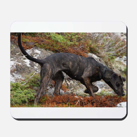 plott hound full Mousepad