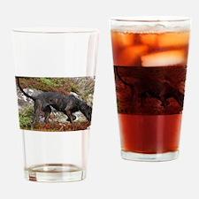 plott hound full Drinking Glass