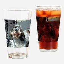 Petit Basset Griffon Vendéen Drinking Glass