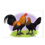 Brown Red OE Bantams Postcards (Package of 8)