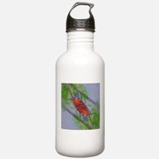 Lone Baltimore Oriole Water Bottle