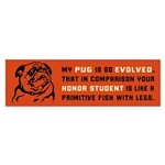 My Pug is So Evolved... - bumper sticker