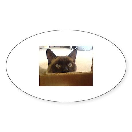 siamese Oval Sticker